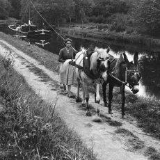 Chemin de halage. Canal du Centre