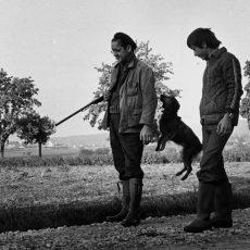 Le chasseur, son fils et leurs chiens