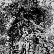 Temple dans la forêt d'Angkor