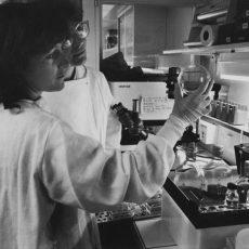 Femmes ingénieurs de recherche en génétique